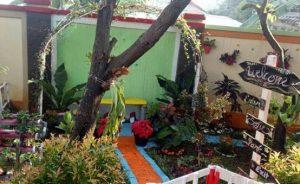 Tips-Membuat-Taman-Rumah-Ala-Jepang-di-Kediaman-Anda