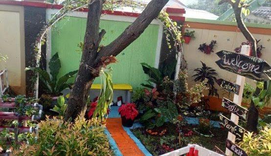 Tips Membuat Taman Rumah Ala Jepang di Kediaman Anda