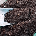 Peluang Usaha Pupuk Organik yang Menguntungkan